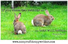 If you chase two rabbits (two ideas), both will escape. More quotes about writing:http://www.nonprofitcopywriter.com/a-wise-word.html#sthash.dKlKMJeE.dpbs