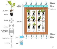 13 Plastic Bottle Vertical Garden Ideas   Soda Bottle Garden   Balcony Garden Web