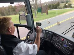 Driver Dean Barth allows a couple of Canada Geese to cross the road. Safety first!