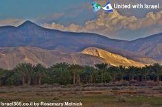 View from the Judean desert