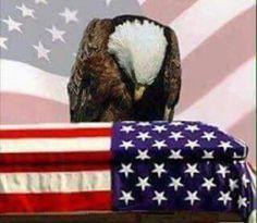 Honoring The Fallen I Love America, God Bless America, America America, American Pride, American Flag, American History, American Quotes, American Freedom, American Spirit