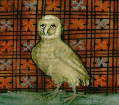"...""Another random interesting element of medieval owl lore is that owls were often nailed to barn doors as a way to ward off evil.  Can any associated be made between this act of nailing and the crucifixion of Christ? """