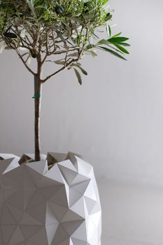 Shape-Shifting Origami Pot Grows with Plant Over Time - My Modern Met