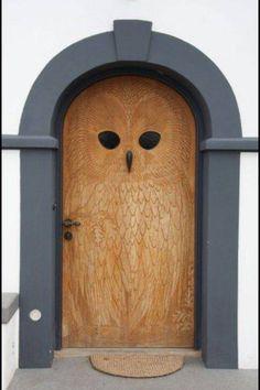 Owl door :3