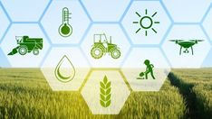 AI can truly empower the complete agricultural industry as well as the farmers. Artificial Intelligence-based agri-tech applications are set to unleash value in agriculture.Greater use of AI would increase productivity by introducing precision agriculture. Development and integration of AI-based technological solutions are the need for the hour to aid in monitoring crop productivity and soil fertility, predictive agricultural analytics, and ensuring supply chain efficiencies. Importance Of Agriculture, Precision Agriculture, Technology In Agriculture, Agriculture Industry, Machine Learning Applications, Environmental Ethics, Increase Productivity, Sustainable Development, Market Research