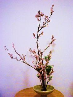 flower arrangement  #Japan