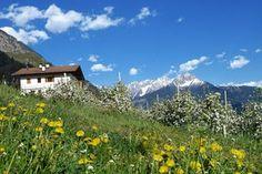 Merano - Merano & surroundings - South Tyrol