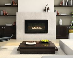 American Hearth: Loft Series Burners and Fireplaces