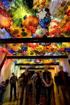 Chihuly : Un univers à couper le souffle | Musée des beaux-arts de Montréal 2013