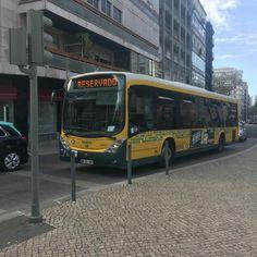 Busse, Lisbon, Shape