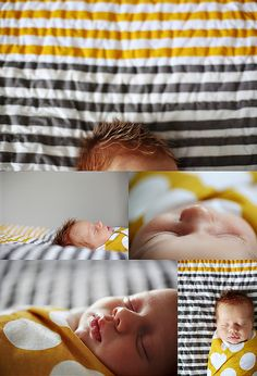 prince george newborn photographer by andrea.hanki, via Flickr | pinksugar