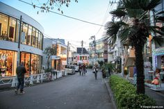 Harajuku District in Japan ! A Fabulous district with its own style !