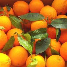 Oferta de 12 kg. de Naranjas por 17,50 €, de Citrics El Pla en hermeneus.es, perfectas para tu zumo de las mañanas.