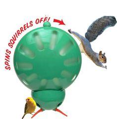 Anti-Squirrel Bird Feeder-gotta have one! @Holly Rivest, show dad this!
