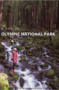 Explore Olympic National Park| National Parks in USA| National Parks in Washington | Hiking in Washington | Day trip from Seattle