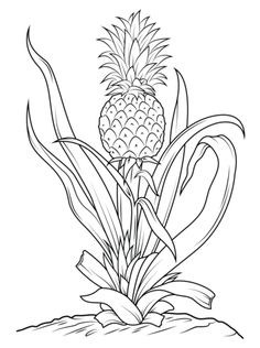 Pineapple Tree Coloring Page From Pineapples Category Select 26396 Printable Crafts Of Cartoons Nature Animals Bible And Many More