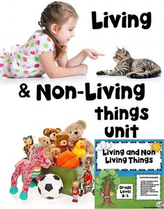 Living and Non-Living Things   Introduce Living and Non-Living things to your students with this super fun packet. This set includes center games and response sheets and so much more. QR Code stories are included for the tech savvy classroom.