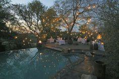 Pool & lights love it