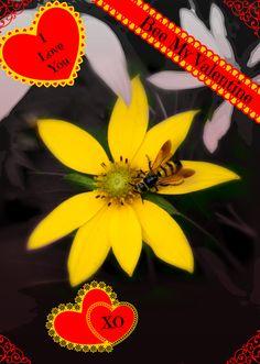 #PicMonkey #PinYourLove