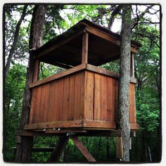 images about Treehouse Designs on Pinterest   Treehouse    Simple treehouse