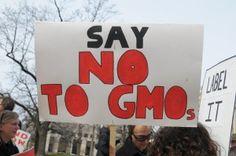 Is Monsanto going down #GYOnotGMO Label GMOs