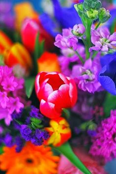 colorful flowers....