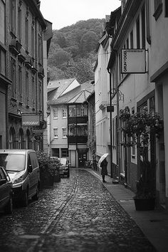 Heidelberg, Germany  where some of my Ancestors are from