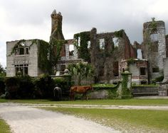 Rockefeller mansion ruins on Cumberland Island, barrier island off the coast of St Mary's, Georgia