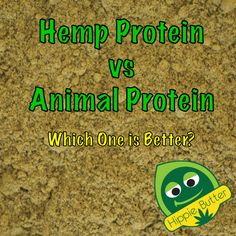 Hemp Protein vs Animal Protein - Learn which one is better.