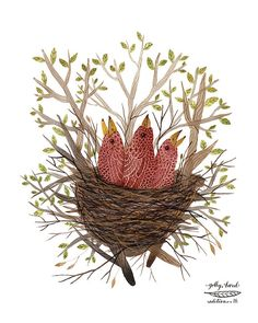 rosy finch fledglings bird art print by GollyBard