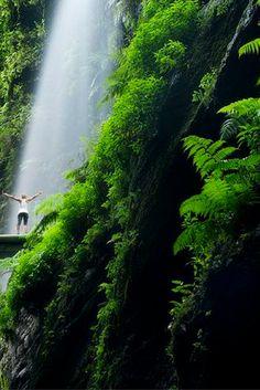 Wat HEERLIJK!🌴  Met Sinterklaas kan jij gewoon 8 dagen op het zonnige La Palma zitten! De prachtige stranden en mooie natuur wachten op je, je zal betoverd worden✨ https://ticketspy.nl/deals/vier-sinterklaas-op-het-tropische-la-palma-8-dagen-naar-dit-paradijs-met-vluchten-va-e249/