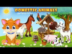 Learn about domestic animals and their sounds with a Cute Cat! Farm animals: cow, goat, pig, sheep, horse, donkey, goose, duck, chicken, rooster, turkey and rabbit. Pets: cat and dog. Please, Subscribe! Thanks in advance!