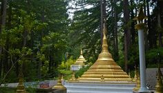 , just north of Santa Cruz and just barely southwest of San Jose. On the road up - Highway 9, near Boulder Creek, I spotted a bright gold color through the trees and turned off to investigate. What I stumbled upon was my first very pleasant surprise of the trip, the Taungpulu Monestary, a small Bhudist temple set among redwoods. What a lovely setting! If you're interested in learning more, here's their website ... http://www.forestpractice.org/