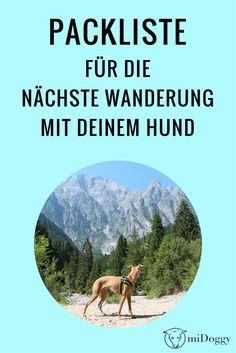Mit Hund wandern: Unsere Packliste, damit Du bei der nächsten Wanderung nichts für Deinen Hund vergisst. Dog Travel, That One Friend, All Dogs, Dog Mom, Where To Go, Beagle, Trekking, Good To Know, Hiking