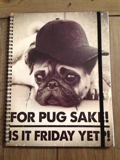 Pug A4 Notebook ~ Typo
