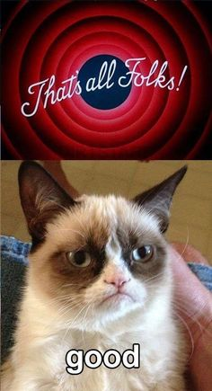 Top 40 Most Funny Grumpy Cat Images with captions #Funny