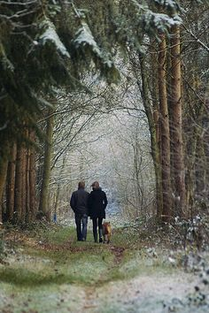 winter walk with the dog