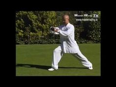 Tai chi for beginners - Yang style Form lesson 3