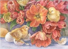 chicks - Lorraine & Martin Ryan
