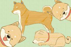 無料で使える柴犬のイラスト素材:喜んでいる柴犬、寝たり、ドッグフードを食べたり、色々なシーンを描いています:基本は鉛筆とgペンでかなりラフな感じのフリーイラスト!クレジット表記も必要ないのでご自由にお使いください。