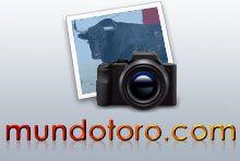 Fotografías que se publican en el portal de Mundotoro.com