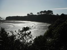Down near New Plymouth, NZ