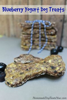Blueberry yogurt dog treats from man's best friend! Thanks, Homemade Dog Treats Now!
