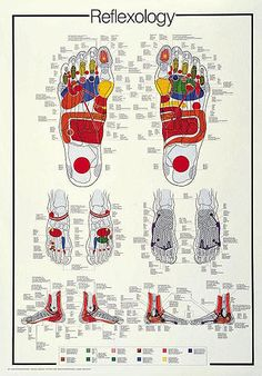 Free Printable Reflexology Charts | Reflexology Foot Chart – Printable – Disability News, Information