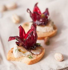 + images about Wild Hibiscus Food on Pinterest | Hibiscus, Hibiscus ...