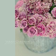 Sarah Gardner Photography