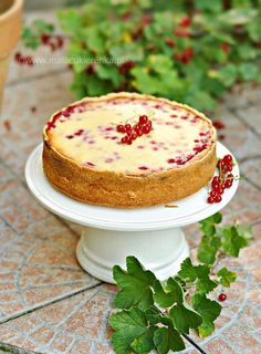 cheesecake with currant