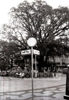 O passeador tijucano: Um passeio pela Praça Saens Peña dos anos 1960