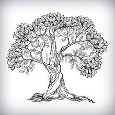 Hand gezeichnete Baum-Symbol isoliert Vektor-Illustration Lizenzfreie Bilder - 24474356