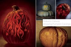 Nature's Canvas - Amazing Pumpkin Carvings